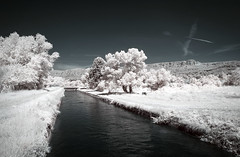 Canal de Carpentras (Lolo_) Tags: infrared canal provence durance mérindol ir carpentras luberon trees arbres france infrarouge