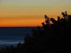 Dopo il tramonto (RoBeRtO!!!) Tags: rdpic blue water sea red orange sky sunset tree acqua mare azzurro cielo rosso arancione tramonto albero sonyhx400v