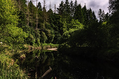 Outnabout Aberfoyle- (Stu 71) Tags: aberfoyle scotland water lochard trees outdoors