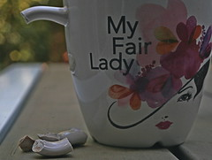 Fair lady out of reach (Viriki22) Tags: broken macromondays mug