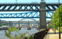 Newcastle bridges (Tony Worrall) Tags: uk update place location visit attraction open england english british unitedkingdom stream tour county country capture outside outdoors caught photo shoot shot picture captured newcastle newcastleupontyne geordie northeast north britain scene tyneandwear town city tyne east tyneside metropolitan region state bridge crossing river