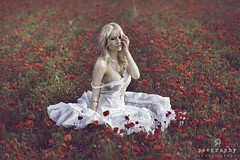 El anhelo / The desire (Jesus Solana Poegraphy) Tags: anhelo poegraphy desire fineartphotography poppies red filed campo amapolas rojo atardecer sunset blond rubia belleza beauty outdoor