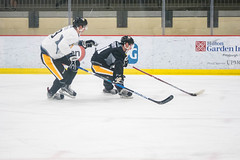 "Pens_Devolpment_Camp_7-1-17-18 • <a style=""font-size:0.8em;"" href=""http://www.flickr.com/photos/134016632@N02/35495074182/"" target=""_blank"">View on Flickr</a>"