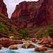 Grand Canyon #6