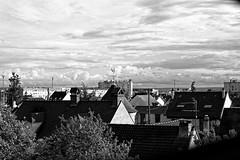 Les Brigadières - Vue sur les Toits (MoTH4FoK) Tags: moth4fok urbex urban urbaine explo exploratin exploring les brigadieres cite residence des toits vue sur view panorama roof noiretblanc noir et blanc blackandwhite black white coq bezons france 95870 rooster girouette