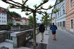 2017-05-11 19-30-14 - IMG_8653n (rudolf.brinkmoeller) Tags: wandern slowenien ljubljana hribarjevonabrezje ljubljanica