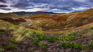Painted Hills Pano