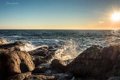 Ocean is calling part VI (Fredrik Lindedal) Tags: sweden sverige ocean coast sun sunlight skyline rocks wave water splash sunlightrays visitsweden visitgothenborg gothenburg göteborg