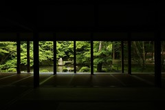 Silence / Kyoto Renge-ji temple  京都 洛北 蓮華寺 (maco-nonch★R) Tags: kyoto kioto rakuhoku 洛北 蓮華寺 temple frame window green wabiwabi 侘寂 pond rengeji