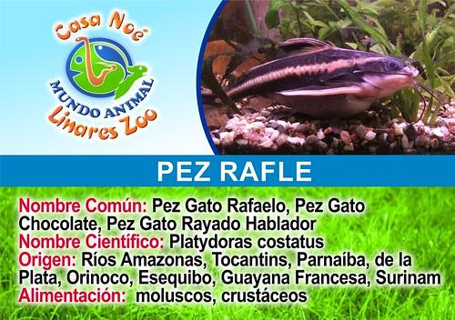 pez rafle