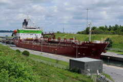 The Sichem Defiance oil/chemical tanker ship passing upstream through the Iroquois Locks in Iroquois, Ontario (Ullysses) Tags: sichemdefiance oiltanker chemicaltanker ship bateau iroquoislocks stlawrenceseaway stlawrenceriver iroquois ontario canada summer été imo9244374