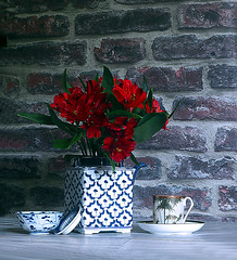 Red Alstromeria (PrunellaCara) Tags: stilllife closeup china porcelain objects alstromeria flowers bluewhite red brick