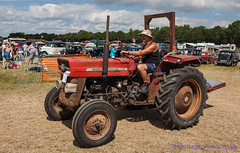 IMG_0177_Woodcote Rally 2017_0222 (GRAHAM CHRIMES) Tags: woodcote rally 2017 steam woodcoterally2017 woodcotesteamrally2017 woodcoterally transport traction tractionengine tractionenginerally steamrally steamfair showground steamengine show steamenginerally vintage vehicle vehicles vintagevehiclerally vintageshow heritage historic classic country commercial preservation wwwheritagephotoscouk restoration woodcotesteam masseyferguson 135 tractor gue901n