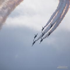 1B3A0957 BREITLING (mg photographe) Tags: meeting aerien avion jet patrouille breitling dijon ba102 plane show