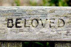 DSCF3624 (janeewillis) Tags: beloved bench wood love carve lettering grain