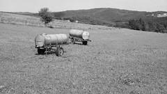 waterreserv (Wöwwesch) Tags: blackwhite eifel sommer somar summer zomer