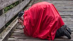 Da Schwammerl-Fotograf / The mushroom photographer (ludwigrudolf232) Tags: regenwetter pilz fotograf brücke