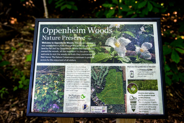 Oppenheim Woods - July 5m 2017