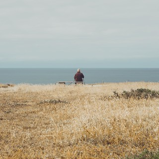 The old man, the golden field and the sea