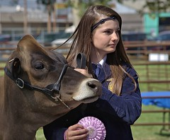 First Prize (swong95765) Tags: cow bovine girl lady contest winner ribbon