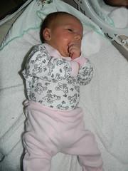 19/365 (Mááh :)) Tags: 365days 365dias 365 baby bebê