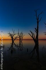 IMG_5458 (biglaptogs) Tags: barmera lakebonney riverland sa states sunsetsunrise