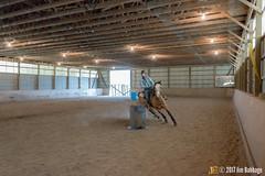 JBC_9456.jpg (Jim Babbage) Tags: krahc annualshow horse bethany horseshow 161 teala