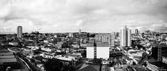 Mogi das Cruzes, SP (Celso Kuwajima) Tags: cityview epsonv800 silverfastai building fujineopanacros100 leicam4 leicasuperangulon13421mm bw panorama analogphotography mogidascruzes sãopaulo brazil br