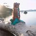 Shooting Lulu - Yuri Kuma Arashi - La Badine - Presqu'île de Giens -2017-05-30- P2090455