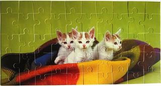 3 Kätzchen (Judy Reinen)