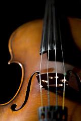 Violin Detail (Liuteria - II)