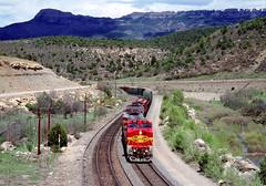 Warbonnets Climb Raton (Erie Limited) Tags: atsf santafe ge c449w gallinasco ratonpass train railfan railroad