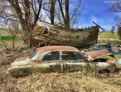 Junkyard Vista - Palouse - Washington State (Electric Crayon) Tags: abandoned cars rust decay junk junkyard pacificnorthwest washingtonstate whitmancounty palouse usa unitedstates america rural spring iphone6s electriccrayon patrickmcmanus