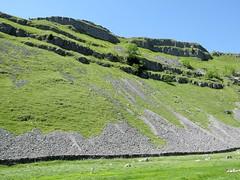 Gordale & Malham 17.6.2017 (2) (bebopalieuday) Tags: yorkshiredales gordale limestone scree gordalescar northyorkshire