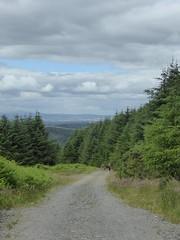 back on track (Brian Cairns) Tags: saintmonicasramblers criffel dumfries stoopidchips brianbcairns