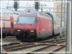 SBB CFF FFS, Re 460 020-1 (v8dub) Tags: sbb cff ffs re 460 020 1 schweiz suisse switzerland fribourg freiburg gare station bahnhof zug train trein treno railroad railway lokomotive locomotive loco lok bahn eisenbahn