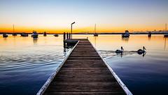 Pelican Pier (scotty-70) Tags: lx100 pelican sunrise water boat