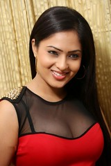 Indian Actress Nikesha Patel Hot Sexy Images Set-2 (30)