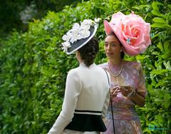 Ascot Ladies (CrisssFotos) Tags: fellowship june2017 royalascot fascinators ladies women elegant