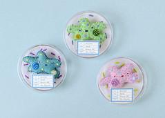 Amoeba Brooches (hine) Tags: amoeba brooch pin plush handmade hinemizushima softsculpture felt feltsculpture fibreart biology microbe plankton art craft toy 水島ひね