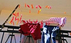 Clothes and Clothespins (Bella Lisa) Tags: clothespins laundry trapani sicily sicilia italy italia mare seaside fishing lapesca