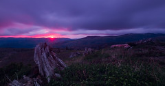Saturday Night Special (Brendinni) Tags: sunsetglow sunset mountsthelens wood blasted clouds glow nd le washingtonstate green purple