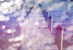 Summer Tides (Hayden_Williams) Tags: dock pier ocean water beach shore shoreline sky sunset sun summer surreal sunlight sea doubleexposure multipleexposure tripleexposure analog analogue ae1 canonae1 fd50mmf18 film kodakportra400 bokeh sparkle shine shining