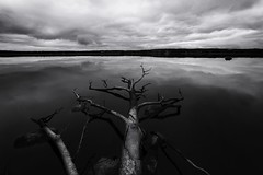 *** (Nick Tkachev) Tags: russia nature nationalgeographic natgeo natgeoru bw blackandwhite b w black white reflections reflection manfrotto nikon 14mm d800 travel exploretheworld seascape lake water ngc