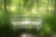 Romantic bench (Helena Normark) Tags: bench parkbench whitebench romantic dreamy glow glowing ringve ringvebotaniskehage trondheim sørtrøndelag norway norge sonyalpha7 a7 50mm monocle монокль monolens russianlens