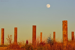 Moonrise|Byxbee Park, Palo Alto, California