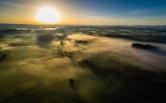Sommer, Sonne, Nebel