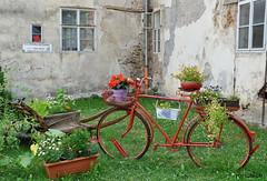 Kavárnička na zámku - Kácov (roj czech) Tags: kolo bike květiny flowers kout zátiší corner zámek posázaví bicykl bicycle květináč okno window zeď wall