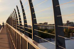 The bridge (fredrik.gattan) Tags: bridge brom västerbron lines leadinglines pattern stockholm sweden silhouette