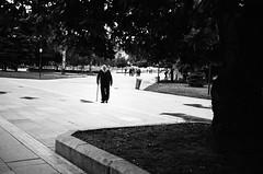 old man (gato-gato-gato) Tags: 35mm bg bulgaria contax contaxt2 iso400 ilford ls600 noritsu noritsuls600 ostblock sofia strasse street streetphotographer streetphotography streettogs t2 analog analogphotography believeinfilm film filmisnotdead filmphotography flickr gatogatogato gatogatogatoch homedeveloped pointandshoot streetphoto streetpic tobiasgaulkech travel wwwgatogatogatoch sofiacity bulgarien black white schwarz weiss bw blanco negro monochrom monochrome blanc noir strase onthestreets mensch person human pedestrian fussgänger fusgänger passant autofocus софия българия urlaub ferien reise adventure